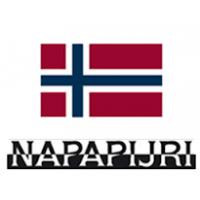 NAPAPIJRI. История бренда | Брендпосылторг
